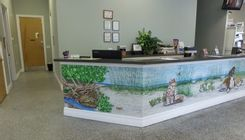 Our front lobby at Newport Animal Hospital.